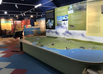 Solway Coast Discovery Centre